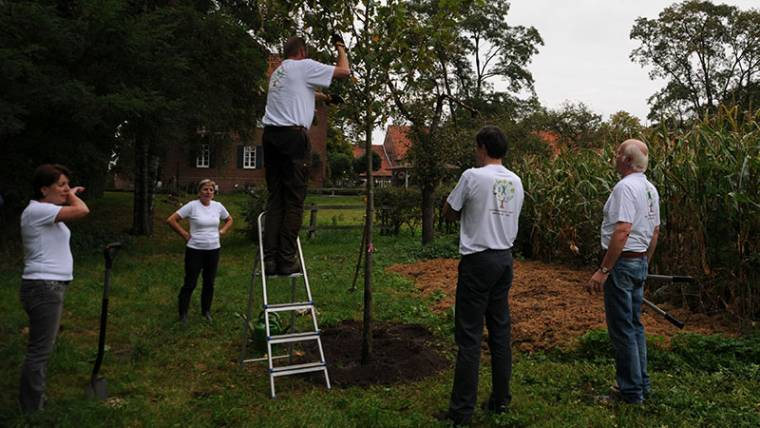 Der Baum des Jahres 2011 wird auf dem Schoellerhof gepflanzt