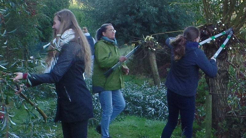 Schülerinnen des Johannes-Kepler-Gymnasiums pflegen Weiden der Stiftung